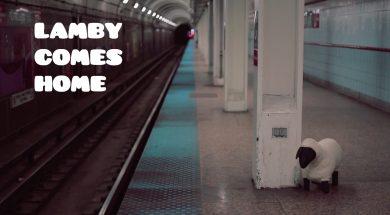 LAMBY COME HOME